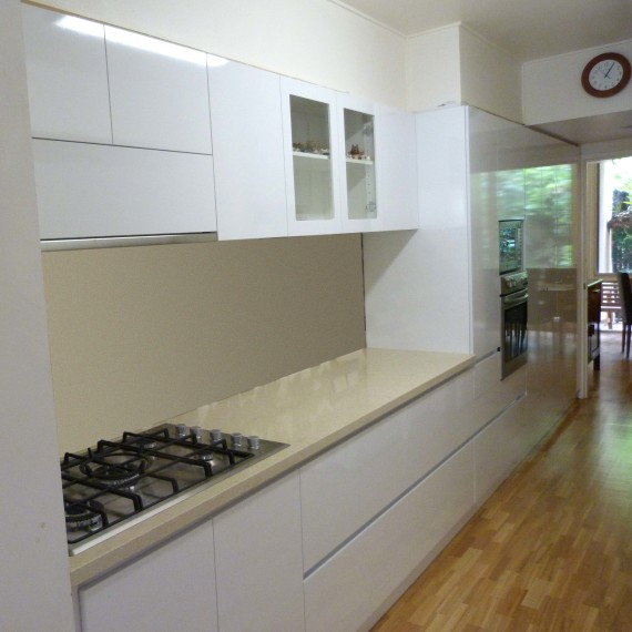Long narrow kitchen 1